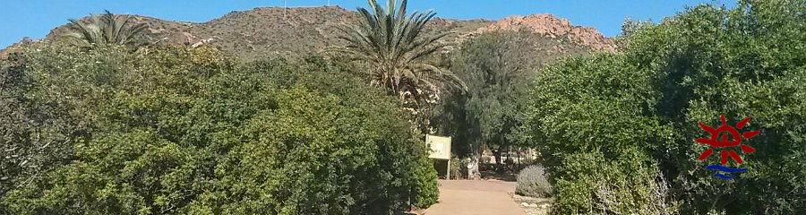Ies bah a de almer a visita al jard n bot nico el albardinal for Jardin botanico cursos